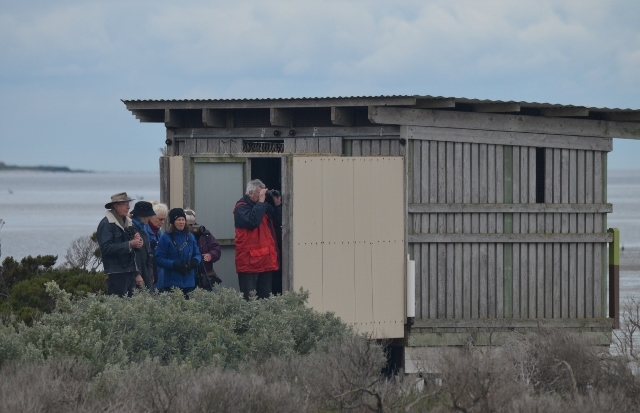 Outside the bird hide